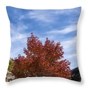 Autumn In Glenwood Canyon - Colorado Throw Pillow