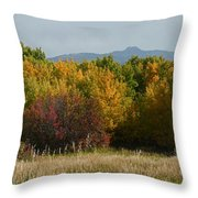 Autumn In Idaho Throw Pillow