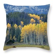 1m9359-autumn In Jackson Hole Ranch Country Throw Pillow