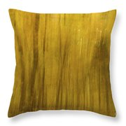 Autumn In Motion - 117 Throw Pillow