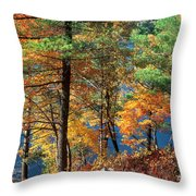 Autumn In New Jersey Throw Pillow