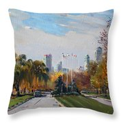 Autumn In Niagara Falls State Park Throw Pillow