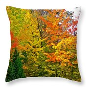 Autumn In Southwest Michigan Throw Pillow