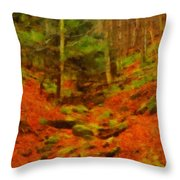 Autumn In Sproul State Forest Throw Pillow