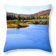 Autumn In The Adirondacks IIi Throw Pillow