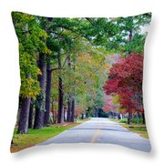 Autumn In The Air Throw Pillow
