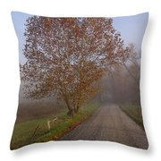 Autumn In The Cove V Throw Pillow