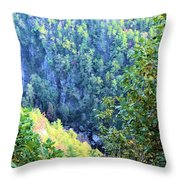 Autumn In The Gorge Throw Pillow
