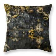 Autumn In The Lake Throw Pillow
