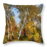 Autumn In The Marshes Throw Pillow