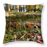 Autumn In The Park Throw Pillow