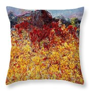 Autumn In The Pioneer Valley Throw Pillow