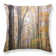 Autumn In The Smoky Mountains Throw Pillow