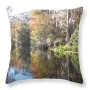 Autumn In A Swamp Throw Pillow