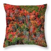 Autumn In The Wasatch Range Throw Pillow