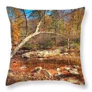 Autumn In Virginia Throw Pillow
