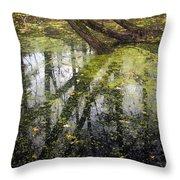 Autumn In Wildwood Park Throw Pillow