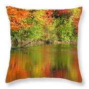 Autumn Iridescence Throw Pillow