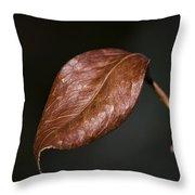 Autumn Is Back Throw Pillow