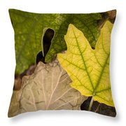 Autumn Is Coming 1 Throw Pillow