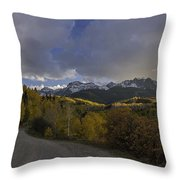 Autumn Journey Throw Pillow