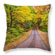 Autumn Journey Throw Pillow