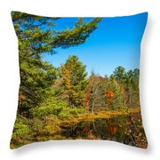 Autumn Lake 4 Throw Pillow