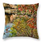Autumn Lake And Swan Throw Pillow