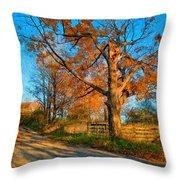 Autumn Lane Mpasto Throw Pillow