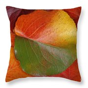 Autumn Leaf Throw Pillow