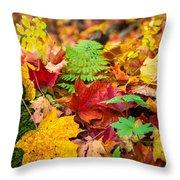 Autumn Leaf Salad Throw Pillow