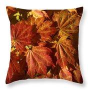 Autumn Leaves 00 Throw Pillow