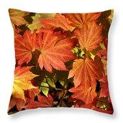 Autumn Leaves 01 Throw Pillow