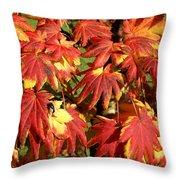 Autumn Leaves 07 Throw Pillow