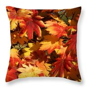 Autumn Leaves 09 Throw Pillow