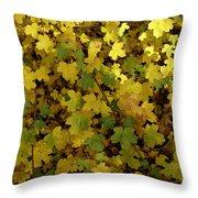 Autumn Leaves 091 Throw Pillow
