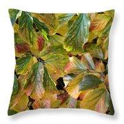 Autumn Leaves 79 Throw Pillow
