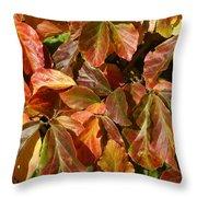 Autumn Leaves 81 Throw Pillow