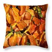 Autumn Leaves 82 Throw Pillow