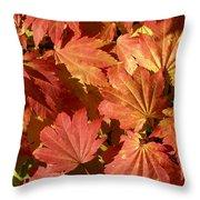 Autumn Leaves 98 Throw Pillow