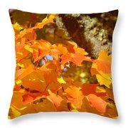 Autumn Leaves Art Print Yellow Orange Throw Pillow