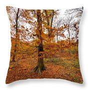 Autumn Leaves Common Wood  Throw Pillow