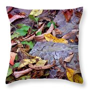 Autumn Leaves In Creek Bed Throw Pillow