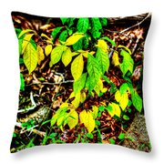 Autumn Leaves In Green And Yellow Throw Pillow