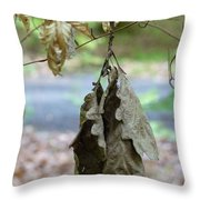 Autumn Leaves In Summer Throw Pillow
