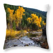 Autumn Leaves Of Red And Gold Throw Pillow