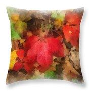 Autumn Leaves Photo Art 04 Throw Pillow