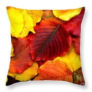 Autumn Leaves Throw Pillow