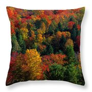Autumn Leaves Vermont Usa Throw Pillow