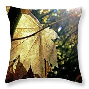 Autumn Light On Leaf Throw Pillow